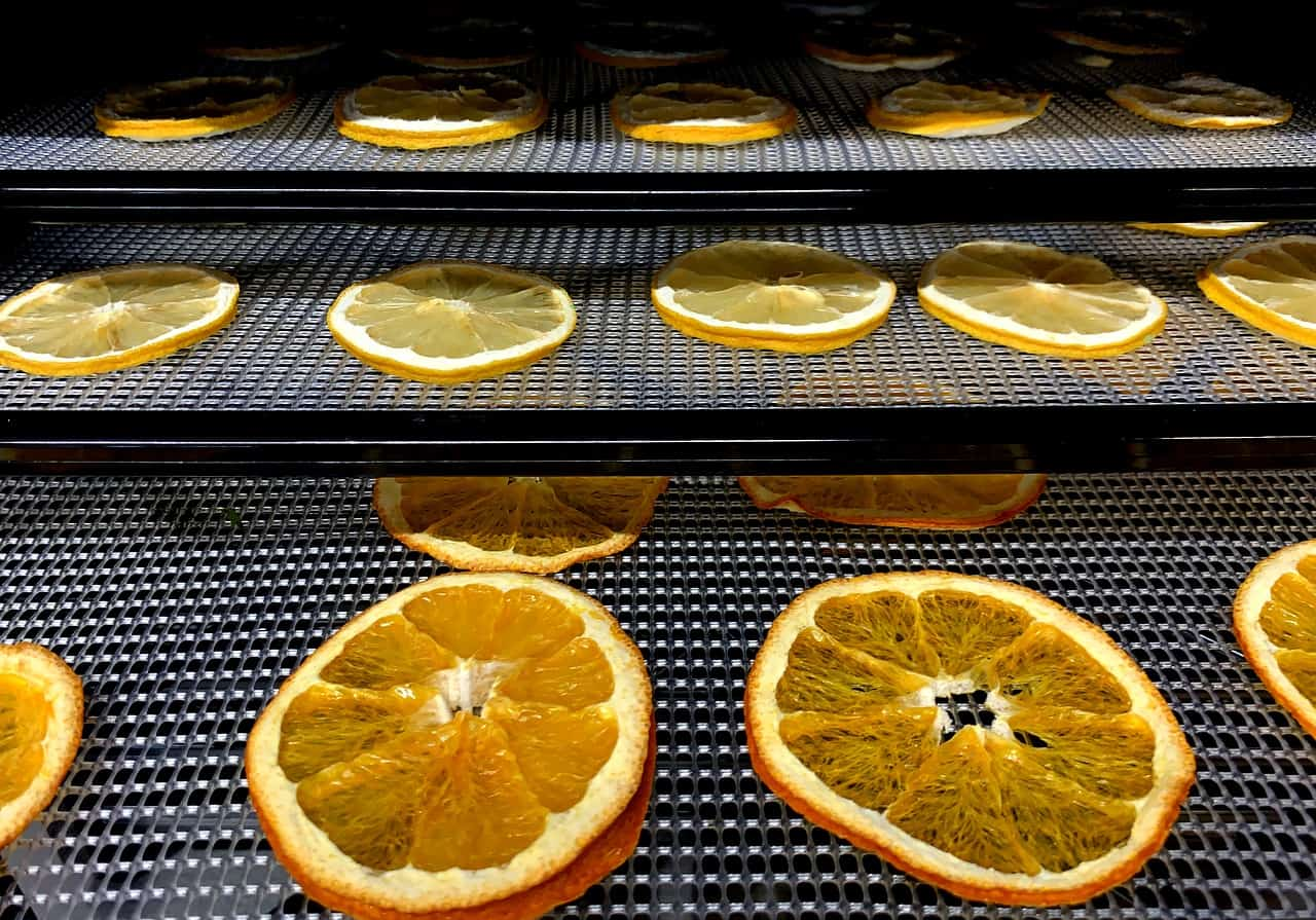 dehydrated food oranges