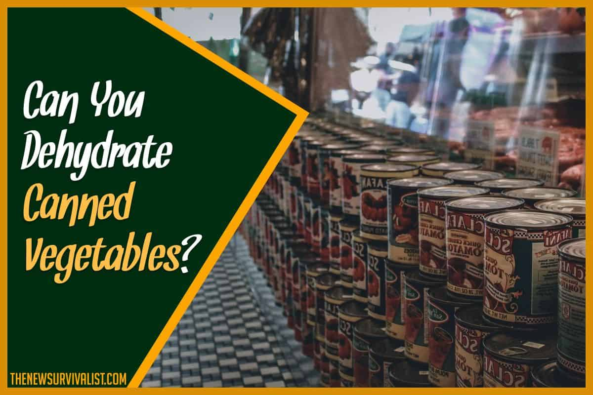 Can You Dehydrate Canned Vegetables