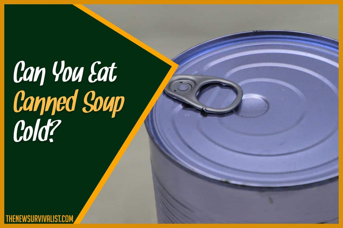 Can You Eat Canned Soup Cold