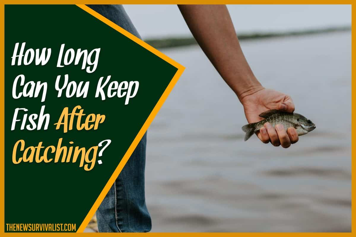 How Long Can You Keep Fish After Catching