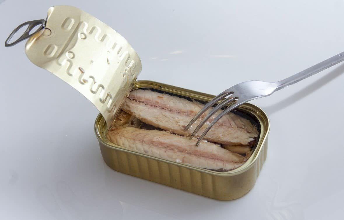 fork open canned food