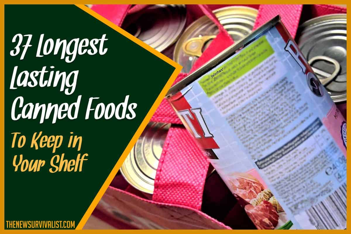 37 Longest Lasting Canned Foods to Keep in Your Shelf