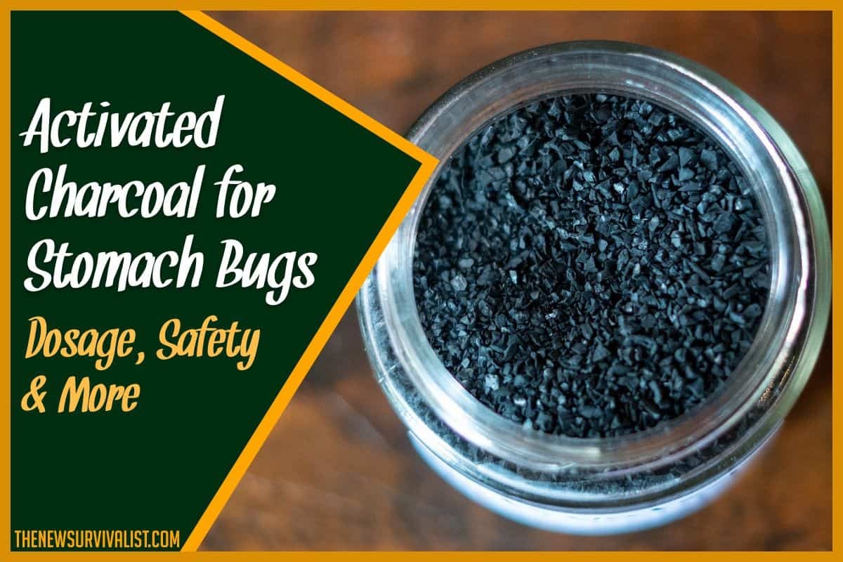 Activated Charcoal for Stomach Bugs Dosage, Safety & More