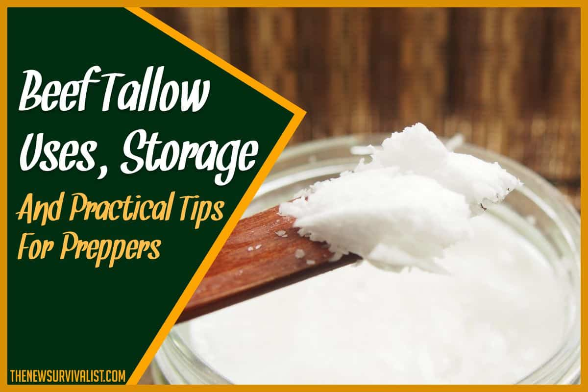 Beef Tallow Uses, Storage, & Practical Tips For Preppers