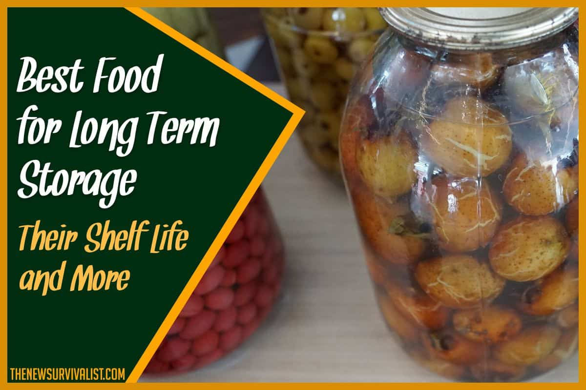 Best Food for Long Term Storage Their Shelf Life and More