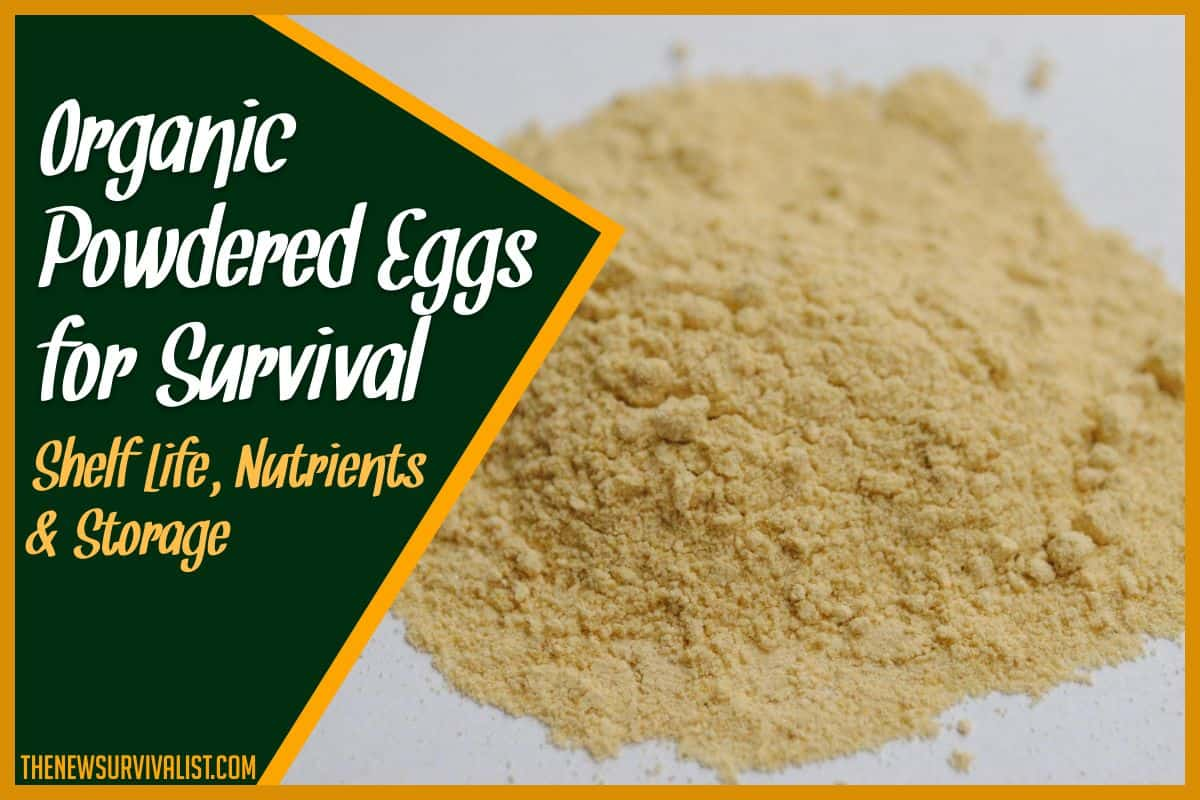 Organic Powdered Eggs for Survival Shelf Life, Nutrients & Storage