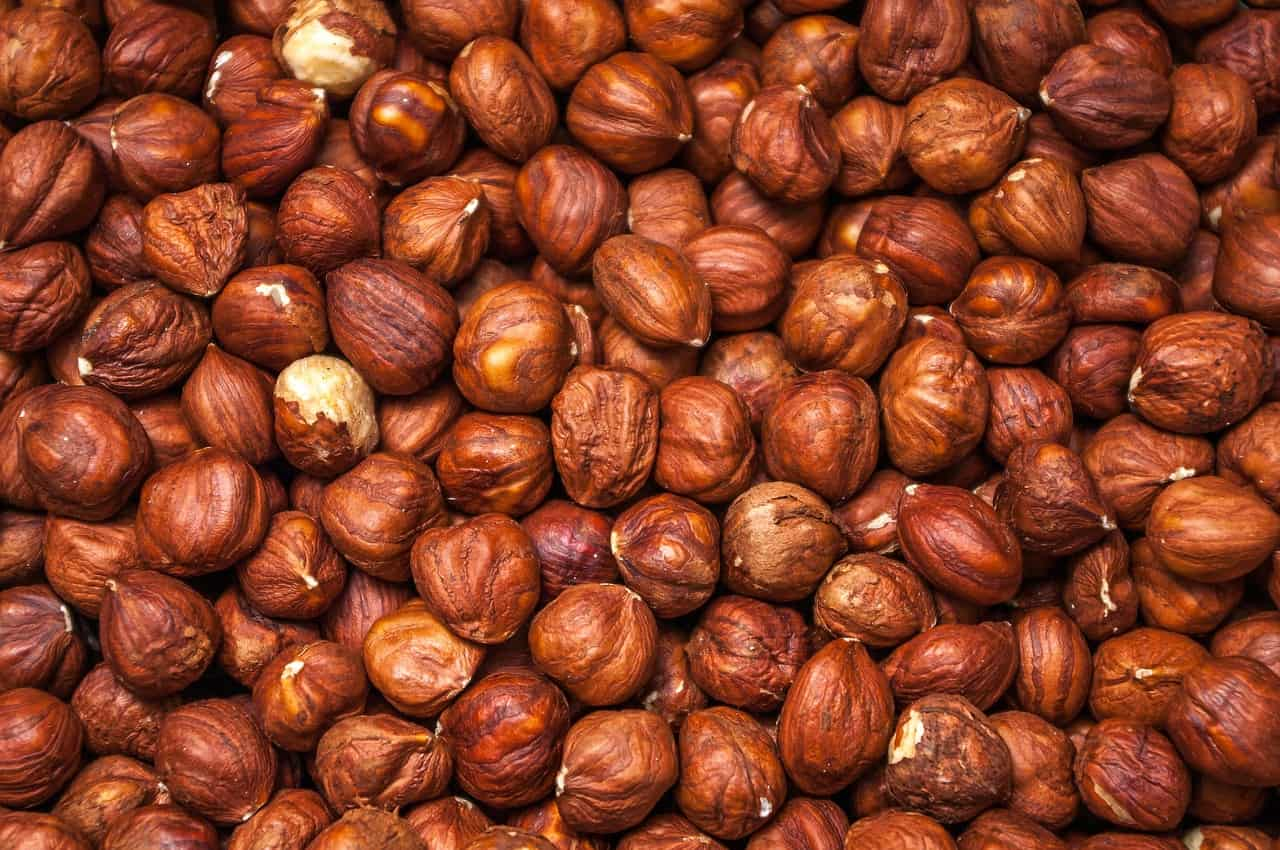 nuts close up
