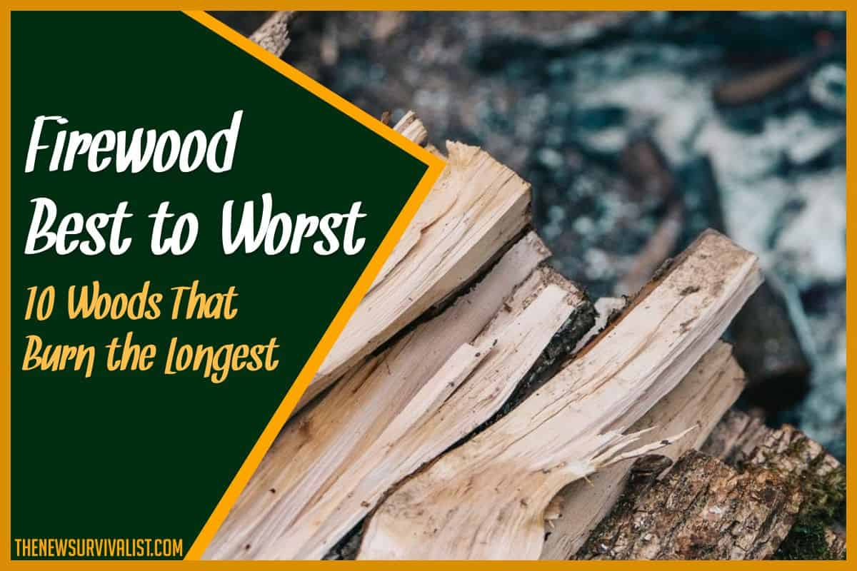 Firewood Best to Worst 10 Woods That Burn the Longest