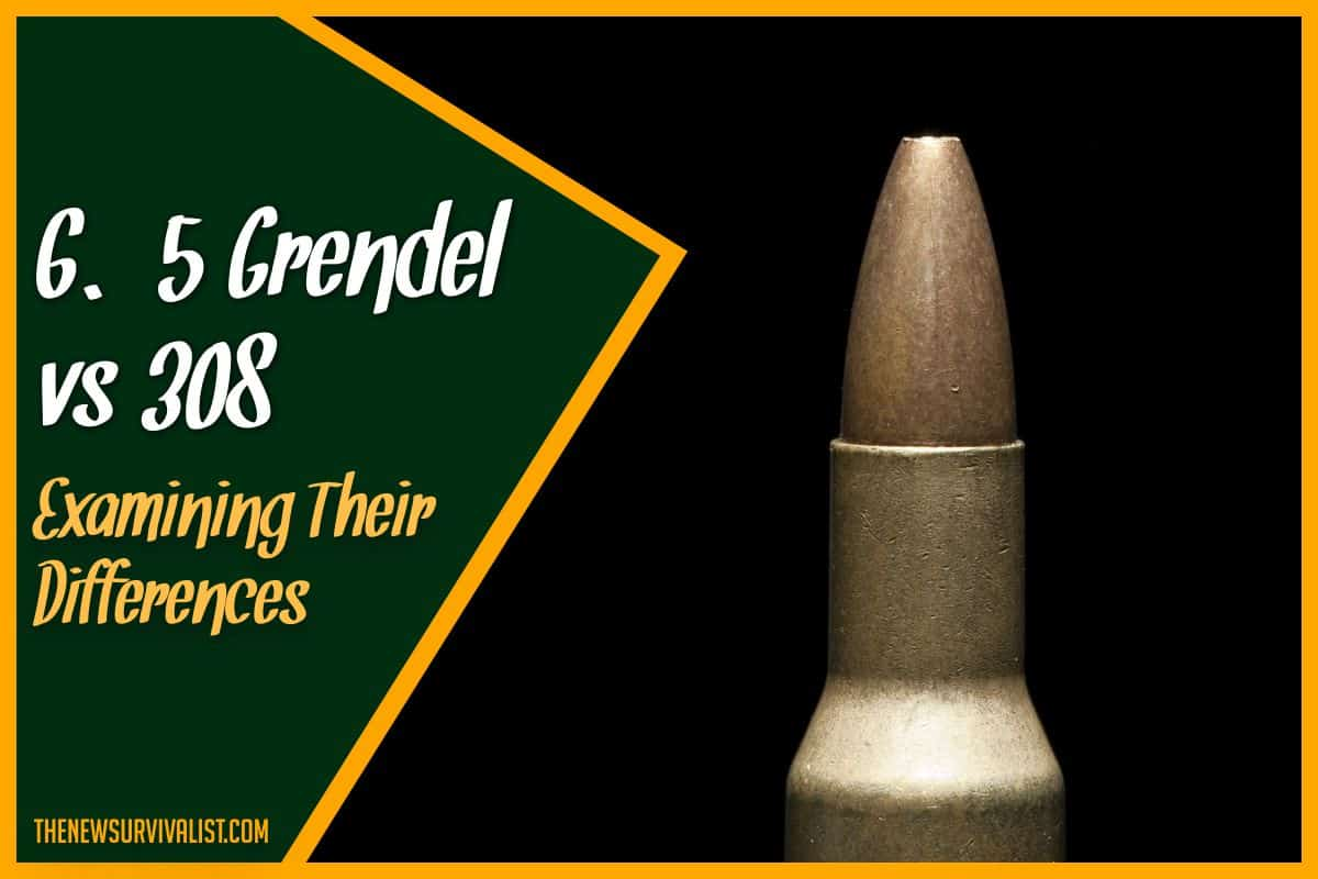 6.5 Grendel vs 308 Examining Their Differences
