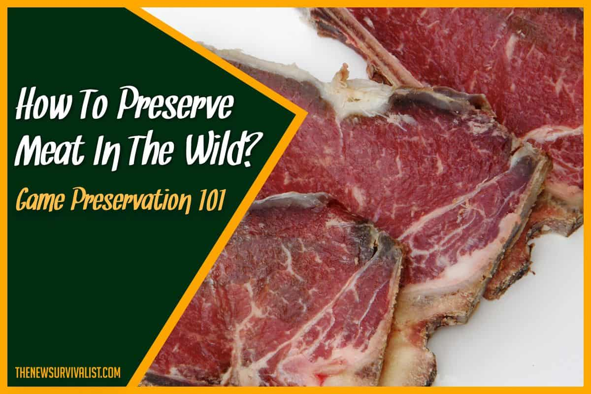 How To Preserve Meat In The Wild Game Preservation 101