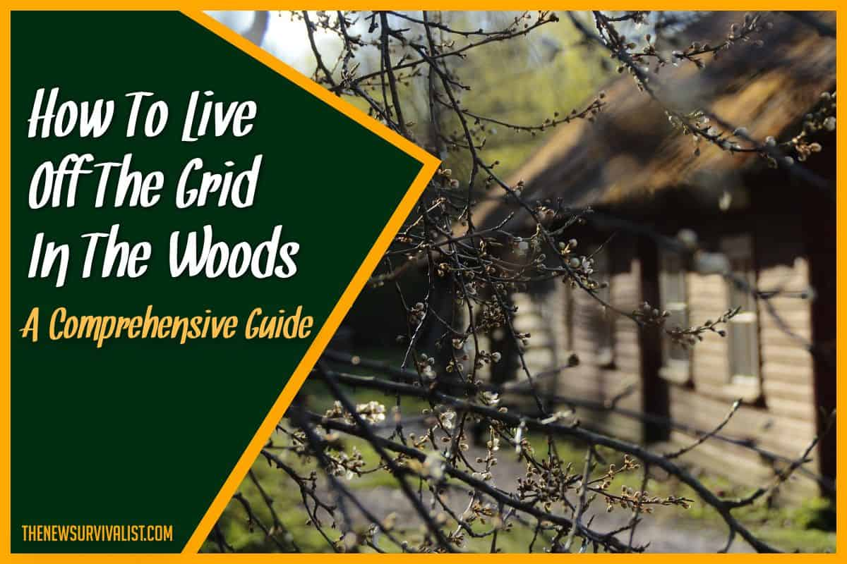 How to Live Off the Grid in the Woods - A Comprehensive Guide