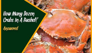 How Many Dozen Crabs In A Bushel #Answered